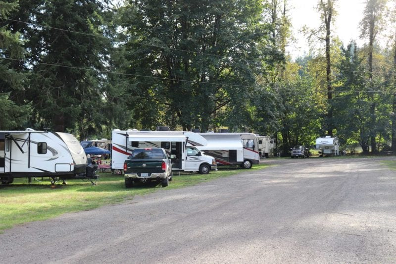 Camping near Mt St Helens at Lone Fir Resort